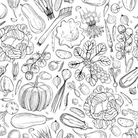 Vector seamless pattern with hand drawn vegetables on white background. Vektorgrafik