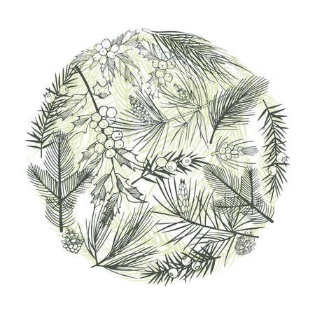 Christmas plants. Vector hand-drawn illustration.