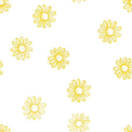 Hand drawn chamomile flowers on white background Vetores