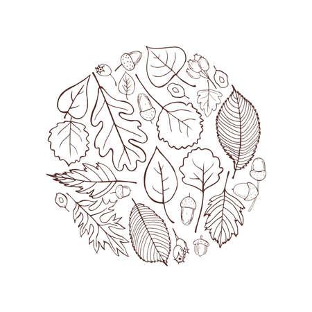 Hand-drawn autumn leaves. 向量圖像