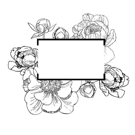 Vector frame with hand drawn peonies. Sketch illustration