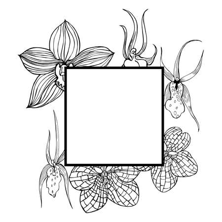 Vector frame with hand drawn orchids.