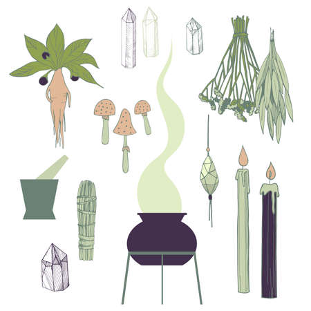 Witchcraft things set. Herbs, crystals, candles, mushrooms.Vector illustration.