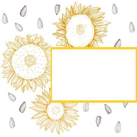 Vector frame with hand drawn sunflower. 向量圖像