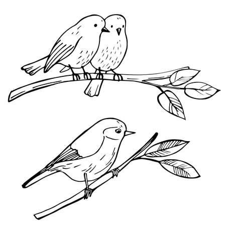 Birds sitting on a branch. Vector sketch illustration. 向量圖像