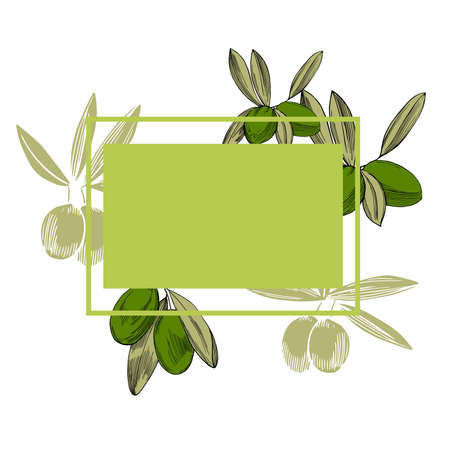 Vector frame with hand drawn olive branches.