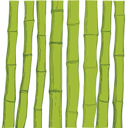 Bamboo. Vector background