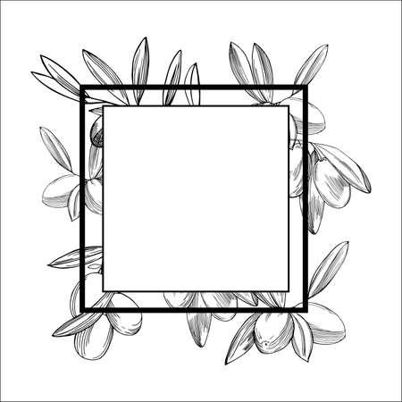 Vector frame with hand drawn with olive branches. 向量圖像