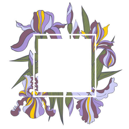 Vector frame with hand-drawn iris flowers.