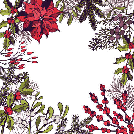 Vector background with hand drawn Christmas plants. Sketch illustration.