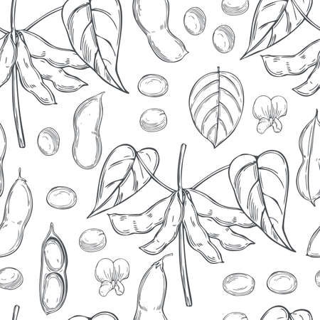 Hand drawn soybean plant on a white background. Vector seamless pattern.