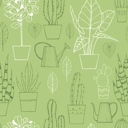 Hand drawn houseplants. Illustration