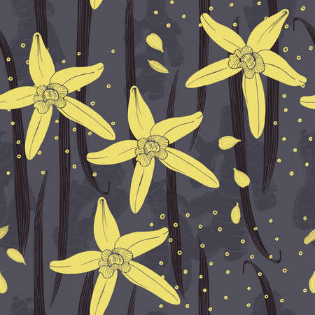 Hand drawn vanilla. The pods and flowers. Vector seamless pattern.