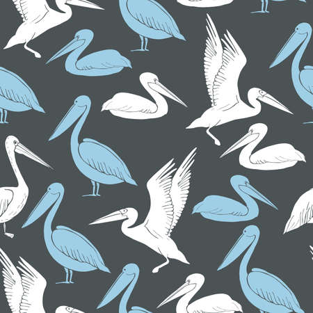 Pelicans.Vector seamless pattern