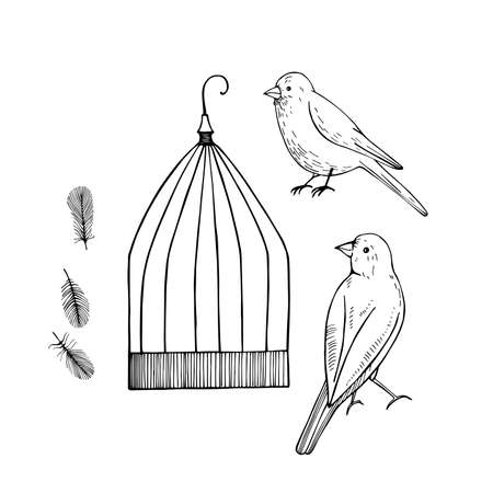 Canary and cage. Vector sketch illustration.
