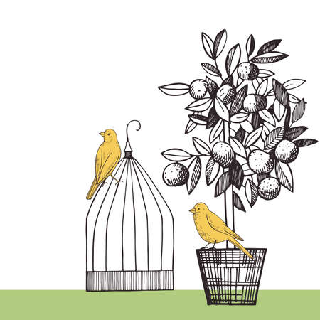 Background with canaries and citrus plant.