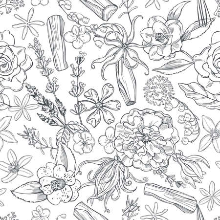 Hand drawn plants and flowers for perfumery.Vector seamless pattern.