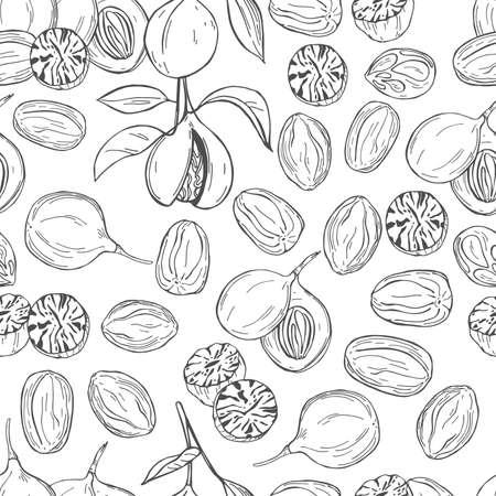 Hand drawn nutmeg. Vector seamless pattern.