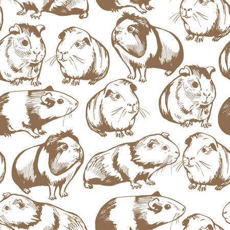 Hand drawn guinea pigs. Vector seamless pattern.