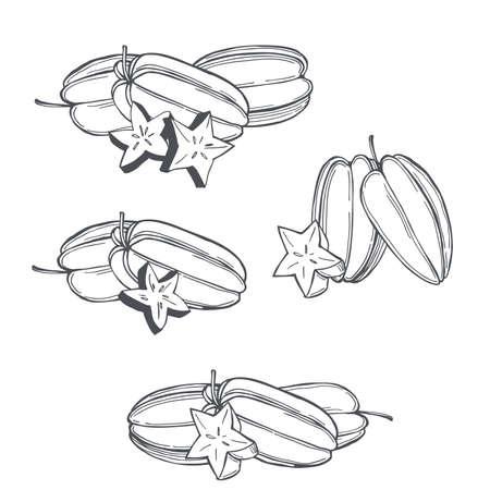 Hand drawn carambola or star apple fruit on white background.Vector sketch illustration. Illusztráció