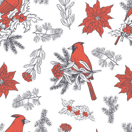 Vector seamless pattern with hand drawn red cardinals, poinsettias and Christmas plants on white background.