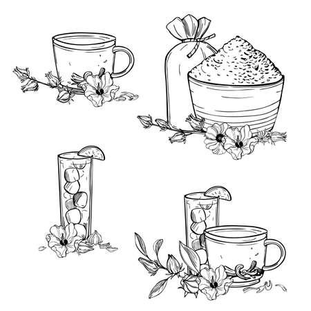 Hand drawn hibiscus tea set. Roselle plant (Jamaica sorrel, Rozelle or hibiscus sabdariffa). Vector sketch illustration.