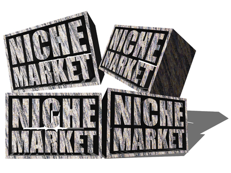 niche: A conceptual illustration of Niche Markets with each block representing a particular niche market