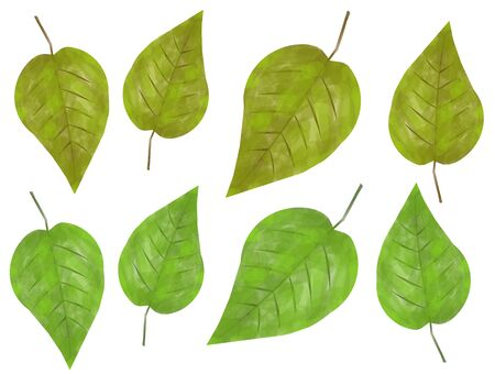 picked: Impressionistic Leaves Collection Stock Photo