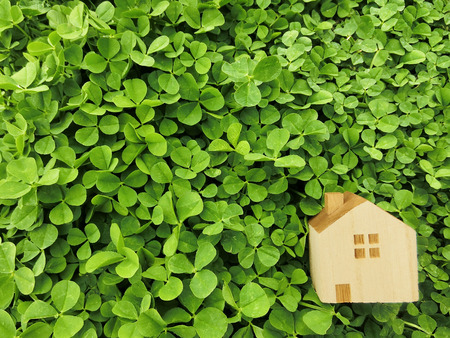 toy home clover background