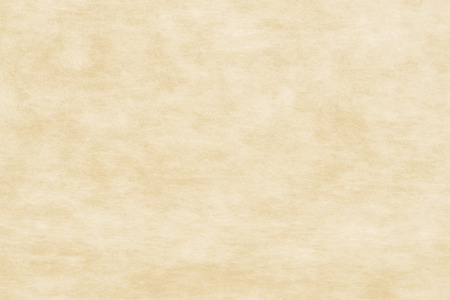 sized: Traditional paper texture-beige ivy background