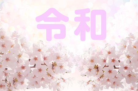 Cherry Blossom and Reiwa Japanese-Reiwa is the new era of Japan