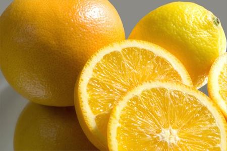 Las plantas de c�tricos - naranja, pomelo y lim�n, sobre fondo gris plano. Foto de archivo - 10203127