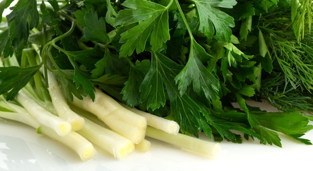 verdure: The Wet verdure, onion, parsley, dill, close-up. Stock Photo