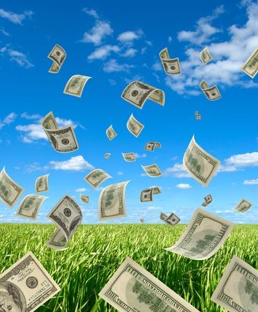 立ち下がりの現金 100 ドルで、背景の空、ハーブ。 写真素材