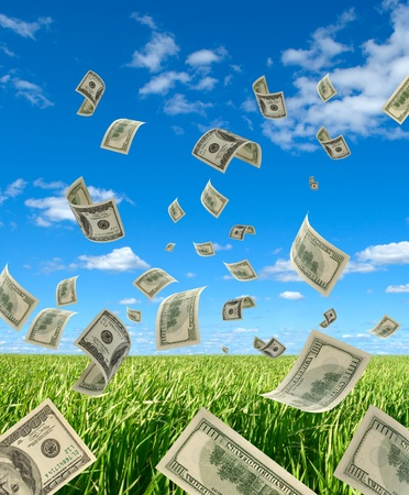 The Falling cash on 100 dollars, on background sky and herbs.