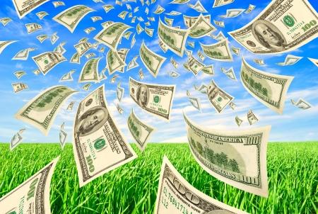空草の変形ドル 写真素材