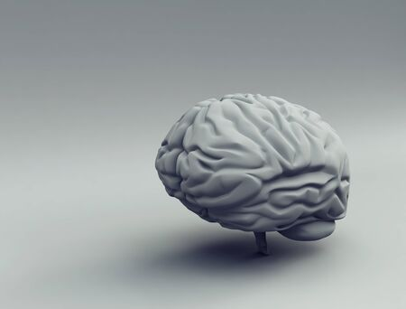 brain - 3d Stock Photo - 9782647