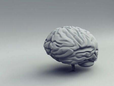 brain - 3d Stock Photo - 9782647