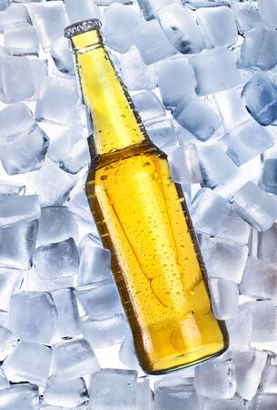 Beer and ice around Stock Photo - 9884624