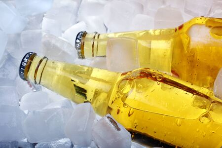 engarrafado: Bottles of beer in ice