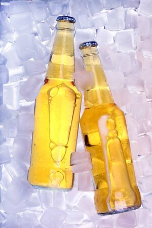 Bottles of beer in ice photo