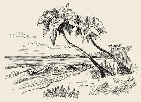 original hand drawn picture of sea Vector Illustration