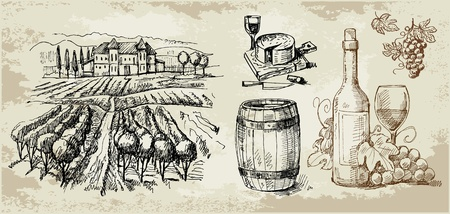 vineyard-original hand drawn collection Vector