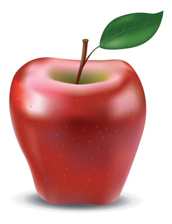 Red glossy apple with leaf