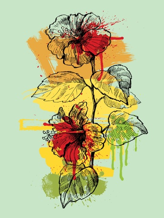 red hibiscus flower: Hibiscus hand drawn illustration Illustration
