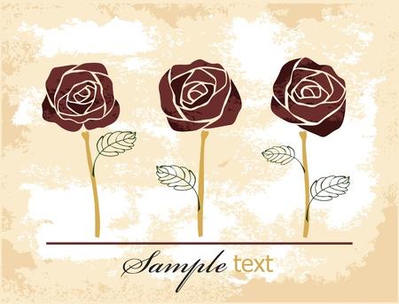 fiori di campo: rose sfondo Vettoriali