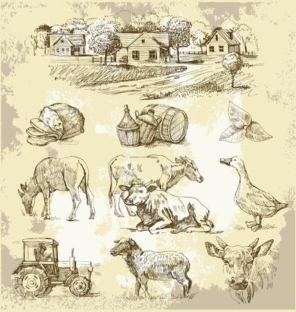 bauernhof: Bauernhof-Sammlung handgefertigten Zeichnung