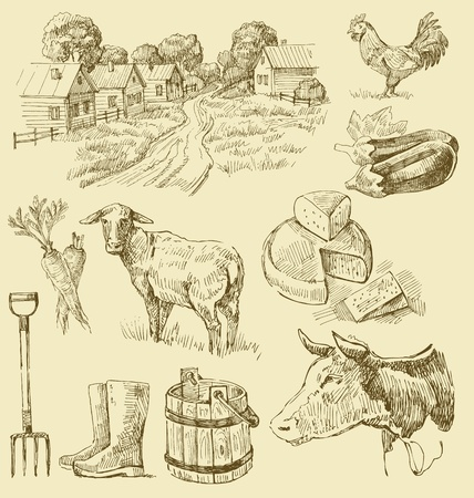 aubergine: Bauernhof-Sammlung handgefertigten Zeichnung