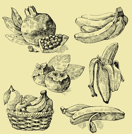 banana leaf: fruit set Illustration