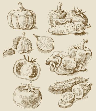 ajo: las hortalizas establece Vectores